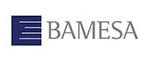 Bamesa
